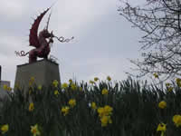 Welsh Dragon near Mametz Wood